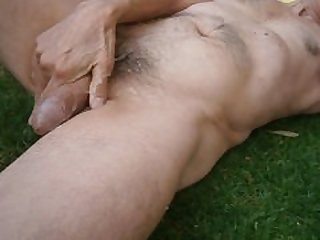 Milking it on the grass